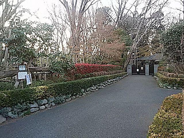 西東京市下保谷4丁目の屋敷林入口(3月27日撮影)