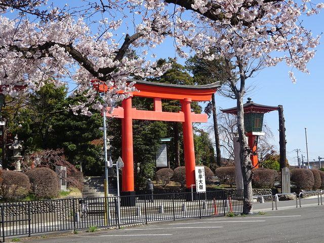 東伏見稲荷神社(2019年4月1日)朔日詣り①