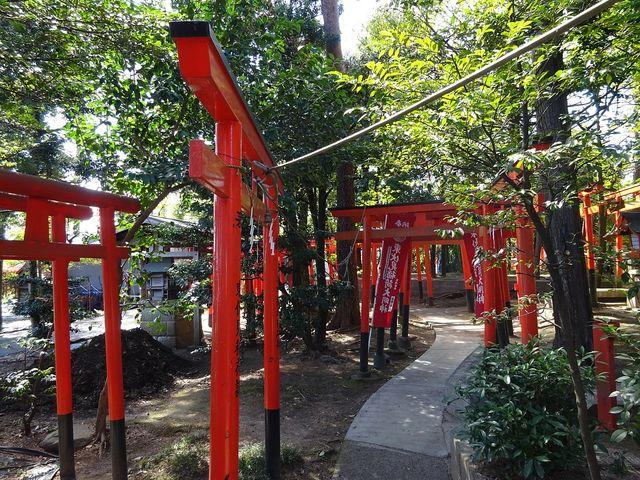 東伏見稲荷神社(2019年4月1日)朔日詣り⑦