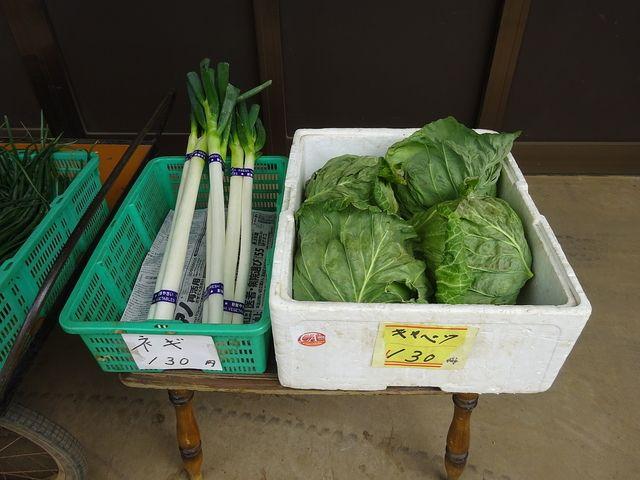 農家さんの直売所に並ぶ野菜(ネギとキャベツ)
