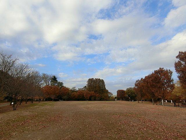 西東京市の最大の公園「西東京いこいの森」の広場