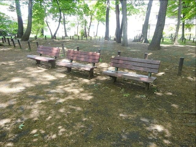 井頭の森緑地 ベンチ