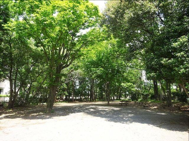 井頭の森緑地4
