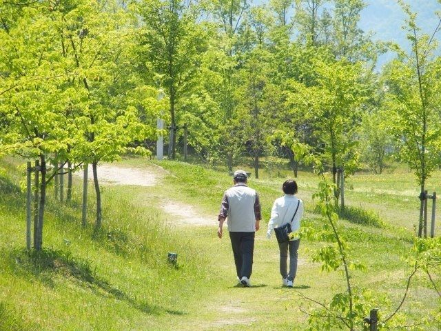 仲睦まじい老夫婦が公園を散策する後ろ姿