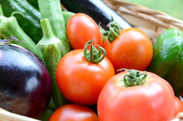 練馬産の新鮮野菜