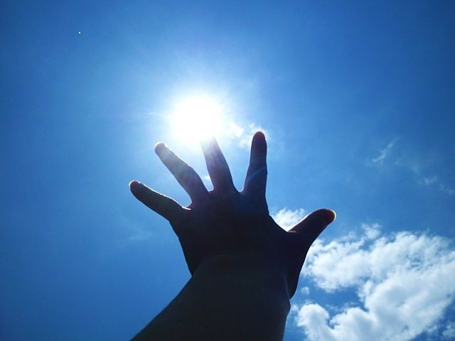 太陽に向かって真っすぐと手を伸ばす