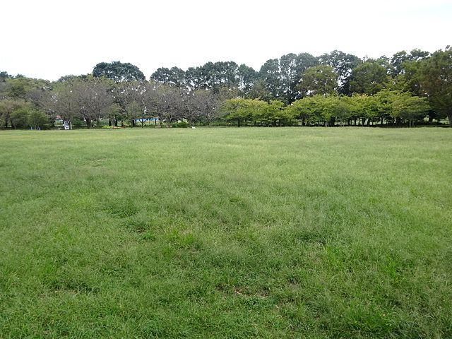 いこいの森公園の芝生広場(2019.10.4)
