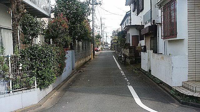 西東京市泉町2丁目の北側道路面 スプラッシュ