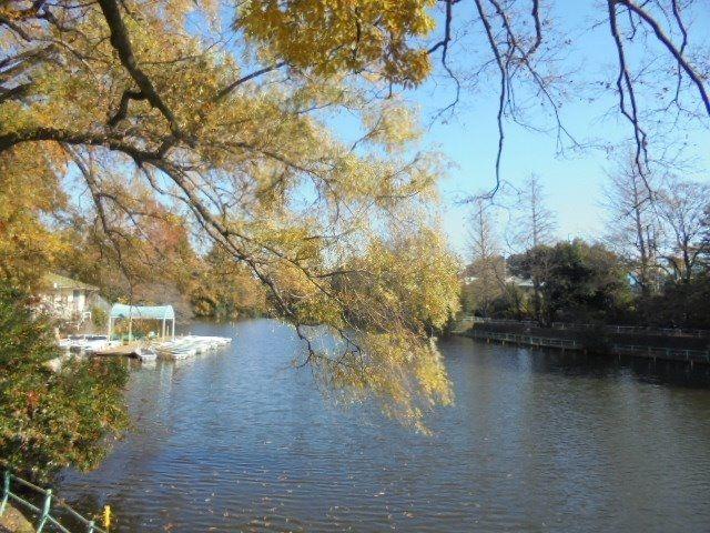武蔵関公園6