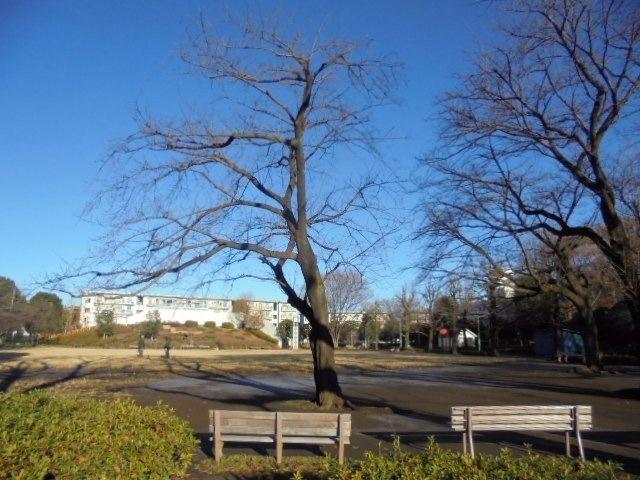 文理台公園(西東京市)6