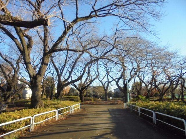 文理台公園(西東京市)