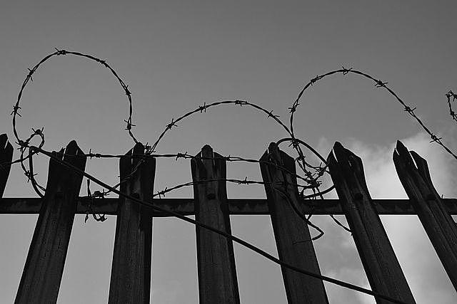 鉄条網で覆われた柵