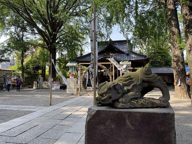 田無神社(2020.6.5)スプラッシュ