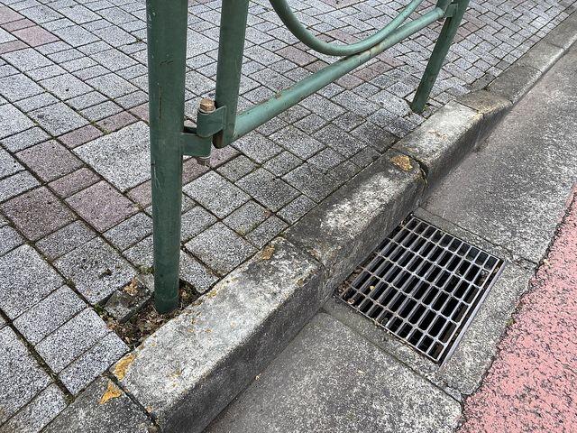 西東京市富士町4丁目かえで通り沿いの歩道(2020.6.7)苔までもキレイになった様子