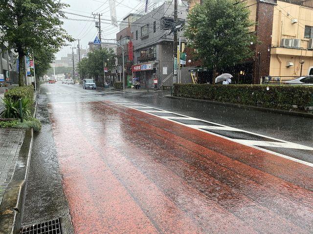 朝から雨が降るかえで通りの様子(2020.7.6)