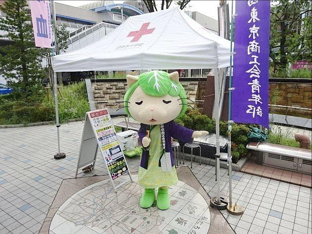 田無駅北口にて西東京商工会青年部と一緒に献血を促すキャベッツさん スプラッシュ