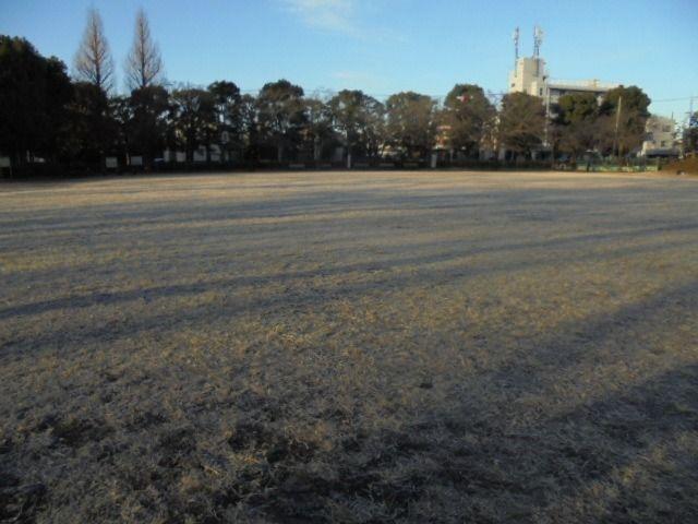 白い霜が降りる芝生の様子