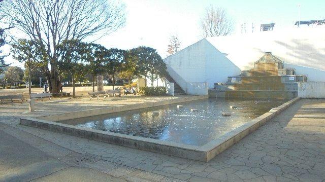 文理台公園の池