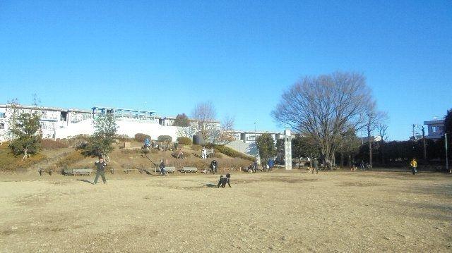 文理大公園の広場