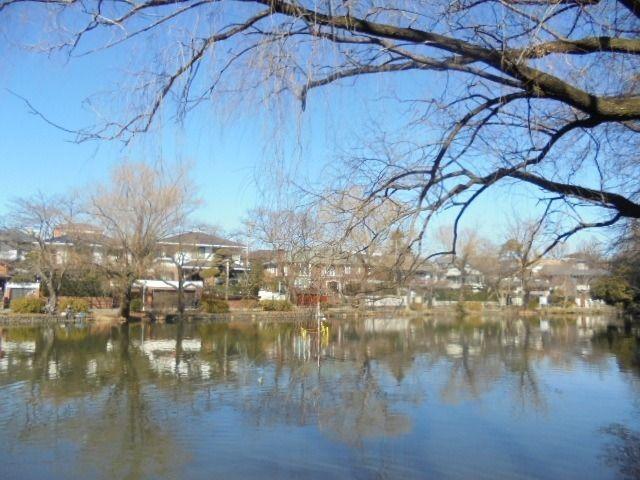 石神井公園、三宝寺は地域の人々に愛される自然豊かな公園です