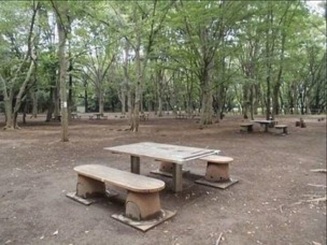 これからの季節に丁度良い光が丘公園を利用しましょう!公園内にはバーベキューコーナーもあります(食材や用具等はご用意下さい)