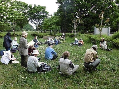 エコプラザでは5/15に春の雑草教室を下野谷遺跡公園にて開講いたします