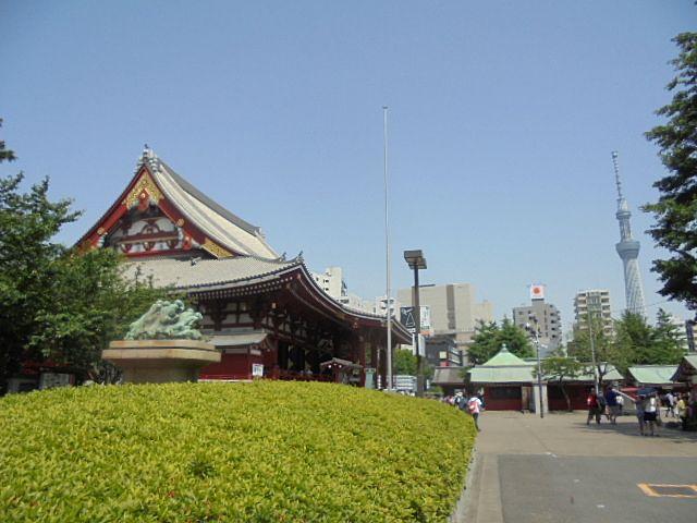 浅草寺本殿とスカイツリー
