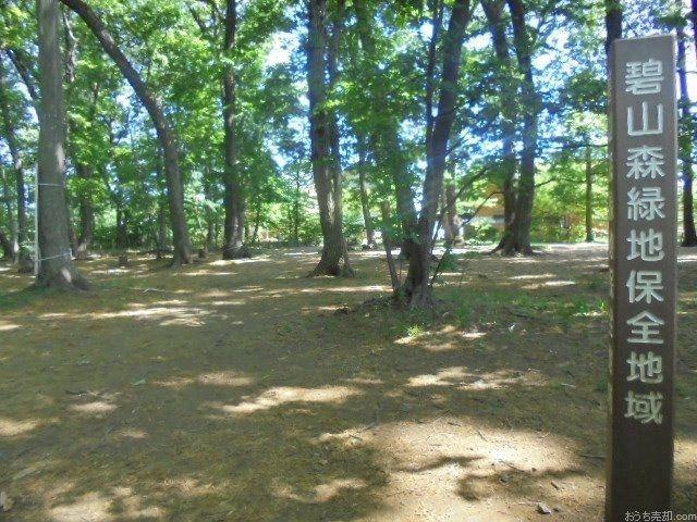 西東京市中町3丁目にある広さ12981㎡緑地保全地域です。