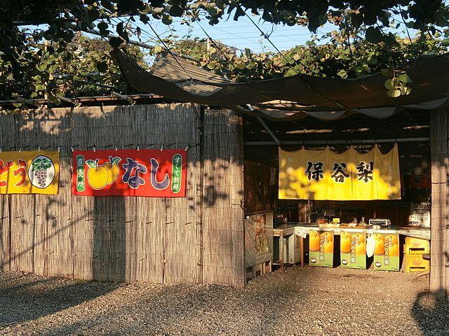 ぬくい果樹園さんのお店の入口には保谷梨の暖簾が掛かっているいます