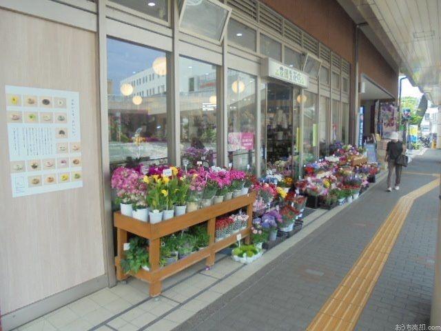 花の贈り物は心の贈り物!店内には、1年中たくさんの生花が所狭しとありますよ。