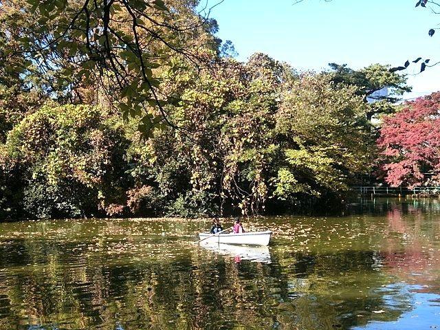武蔵関公園の池でボートを楽しむ人