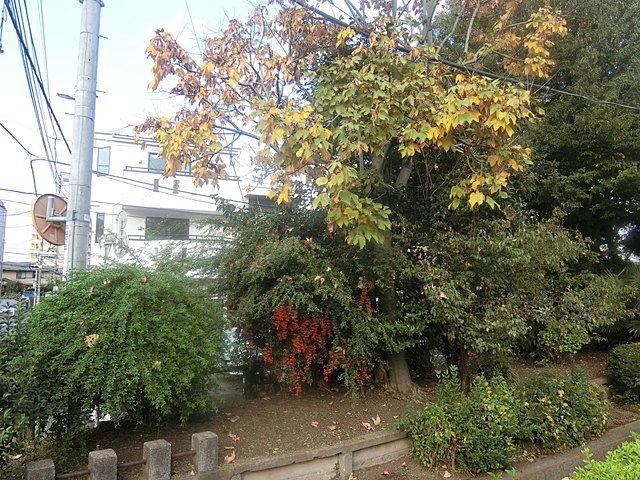 千川上水沿いに建つ西東京市東伏見4丁目の新築住宅