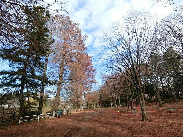 12月19日の石神井公園