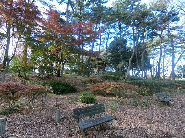 石神井公園内のベンチ