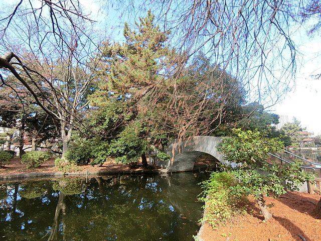 石神井公園内の太鼓橋