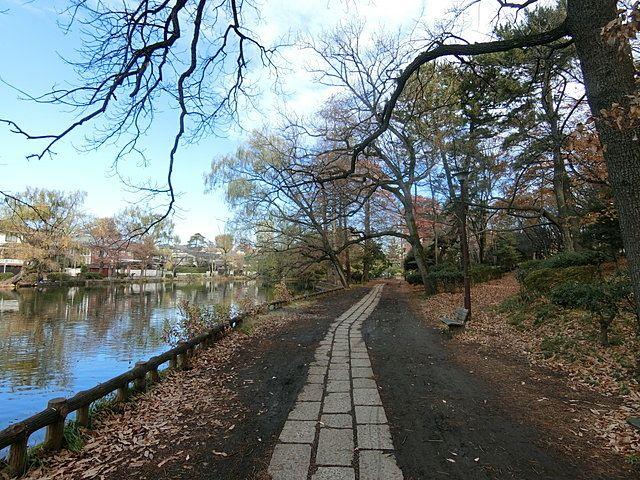 12月19日の石神井公園の街路